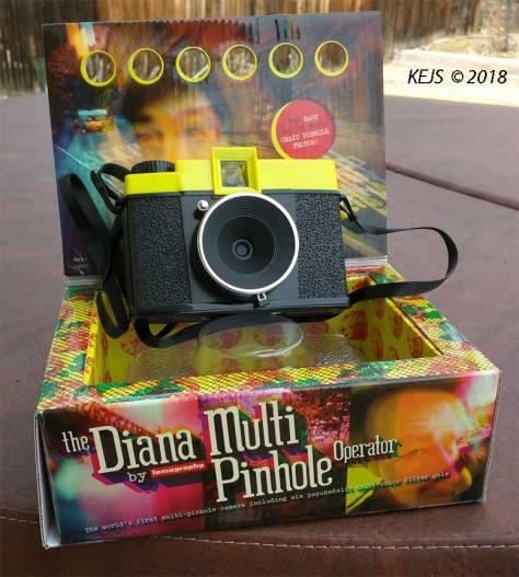 Diana_Pinhole