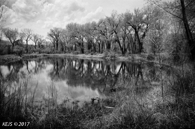 Roadside Reflections