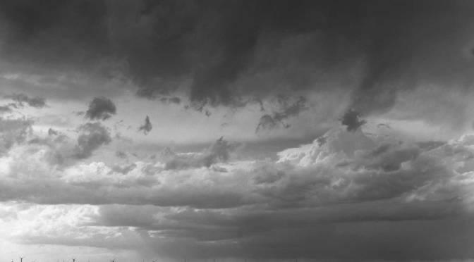 Prairie Sentinels Part II