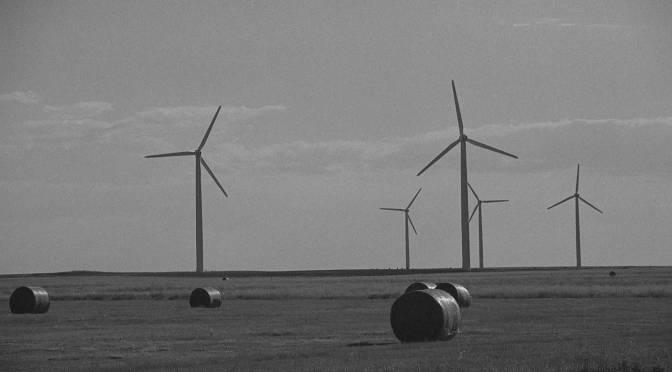 Prairie Sentinels