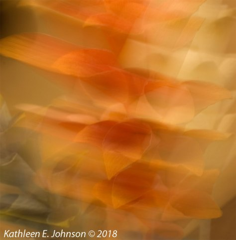 KE_Johnson_Abstraction