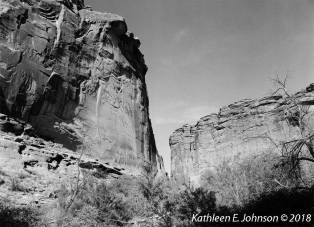 Day_Canyon_TMax