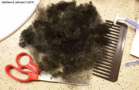 HairCarnage