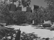 Mesa_Courtyard4