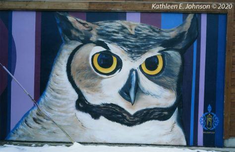 Owl_E100