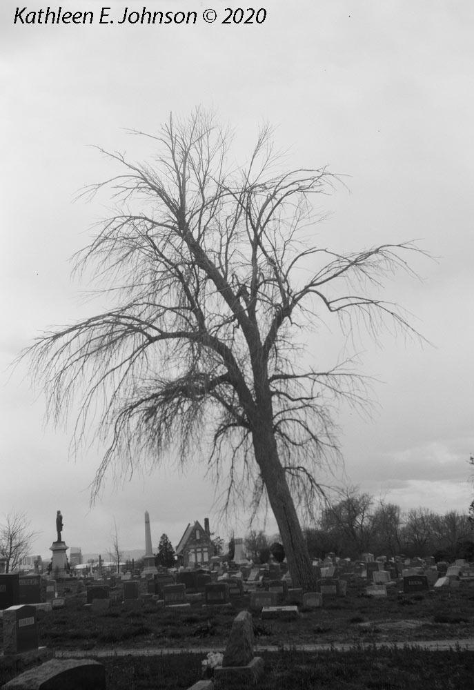 Riverside_Cemetery