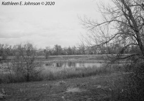 Riverside_Waneka_Pond